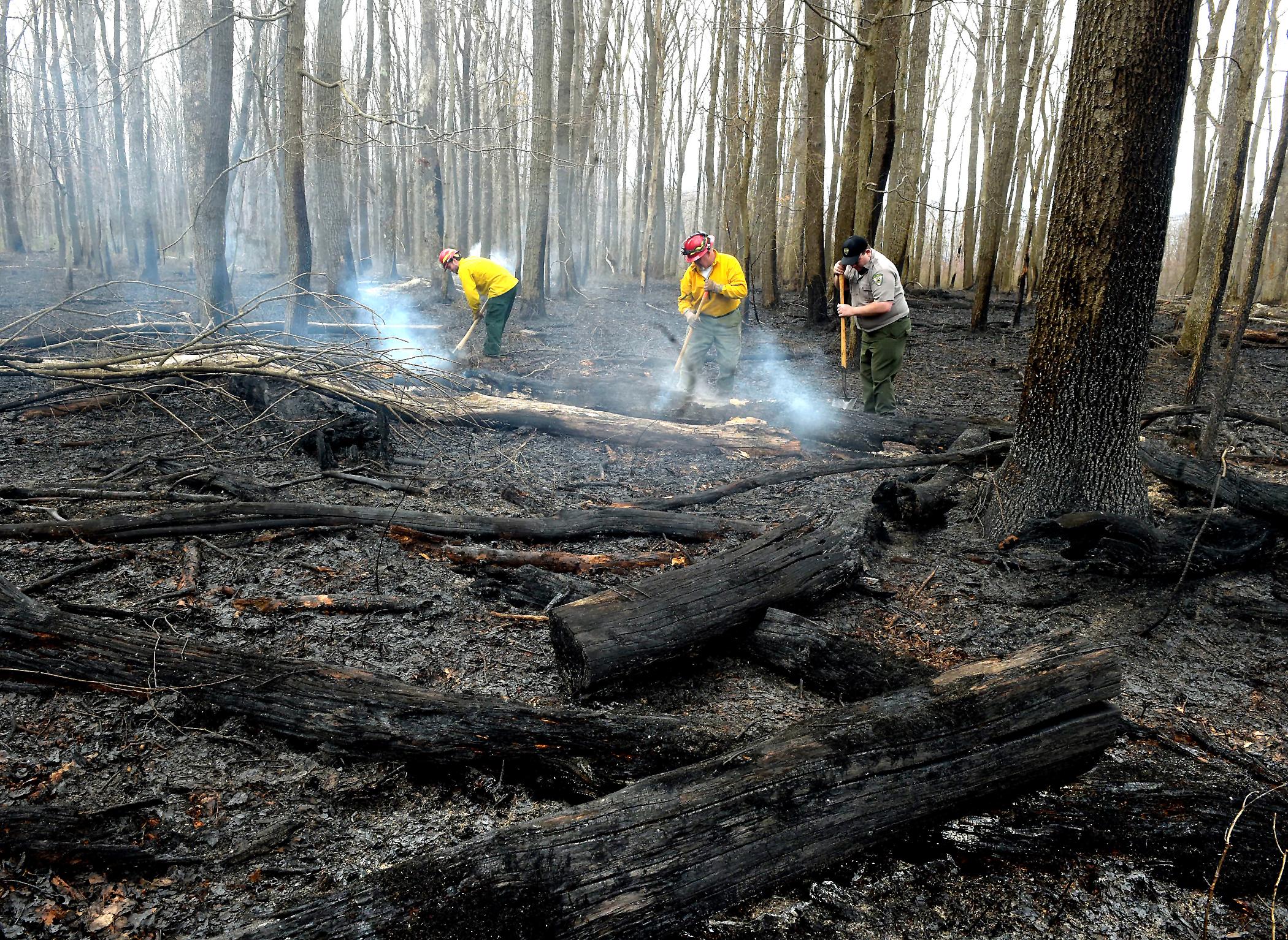 coopers rock bushfire