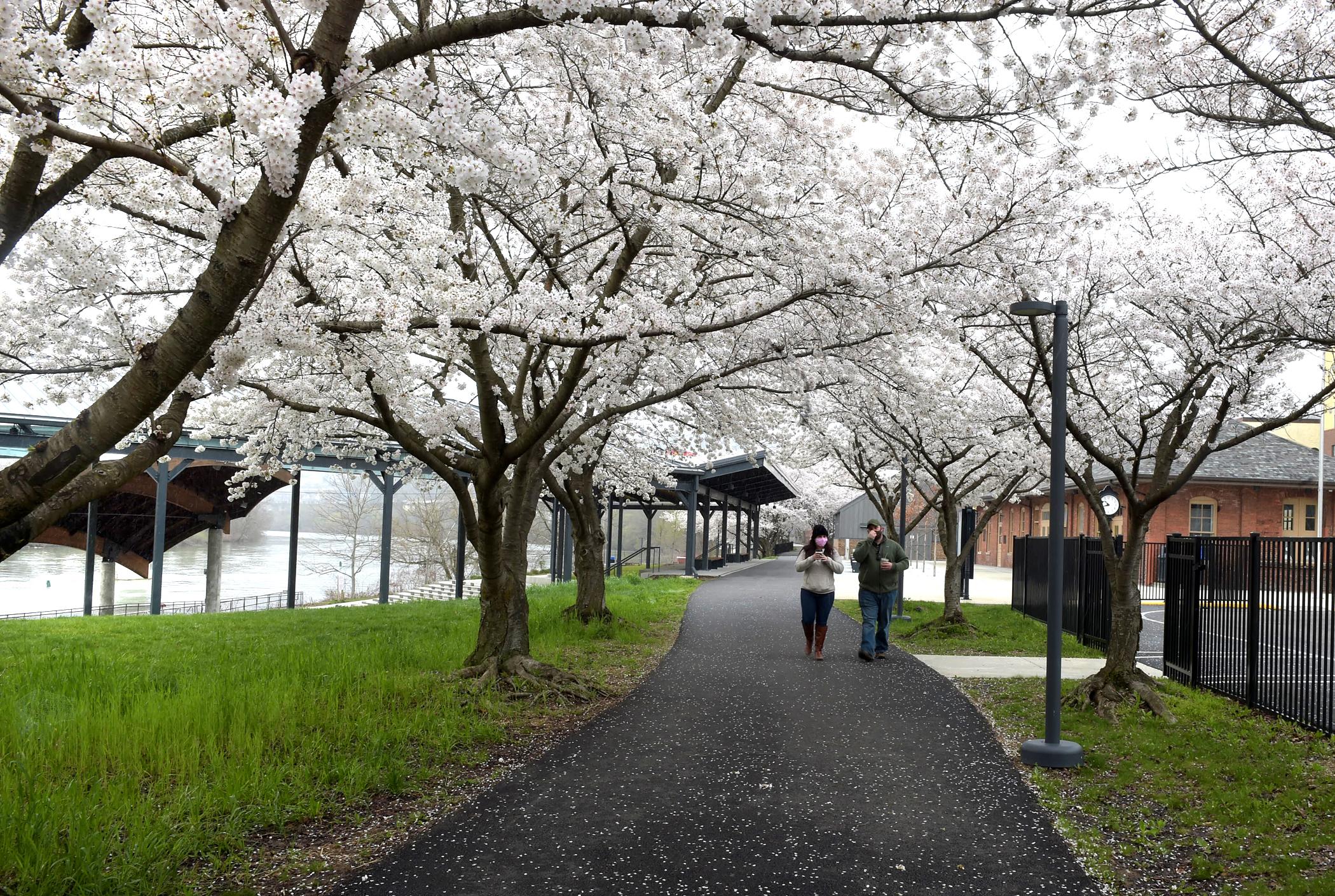 snowy april Hazel Ruby park