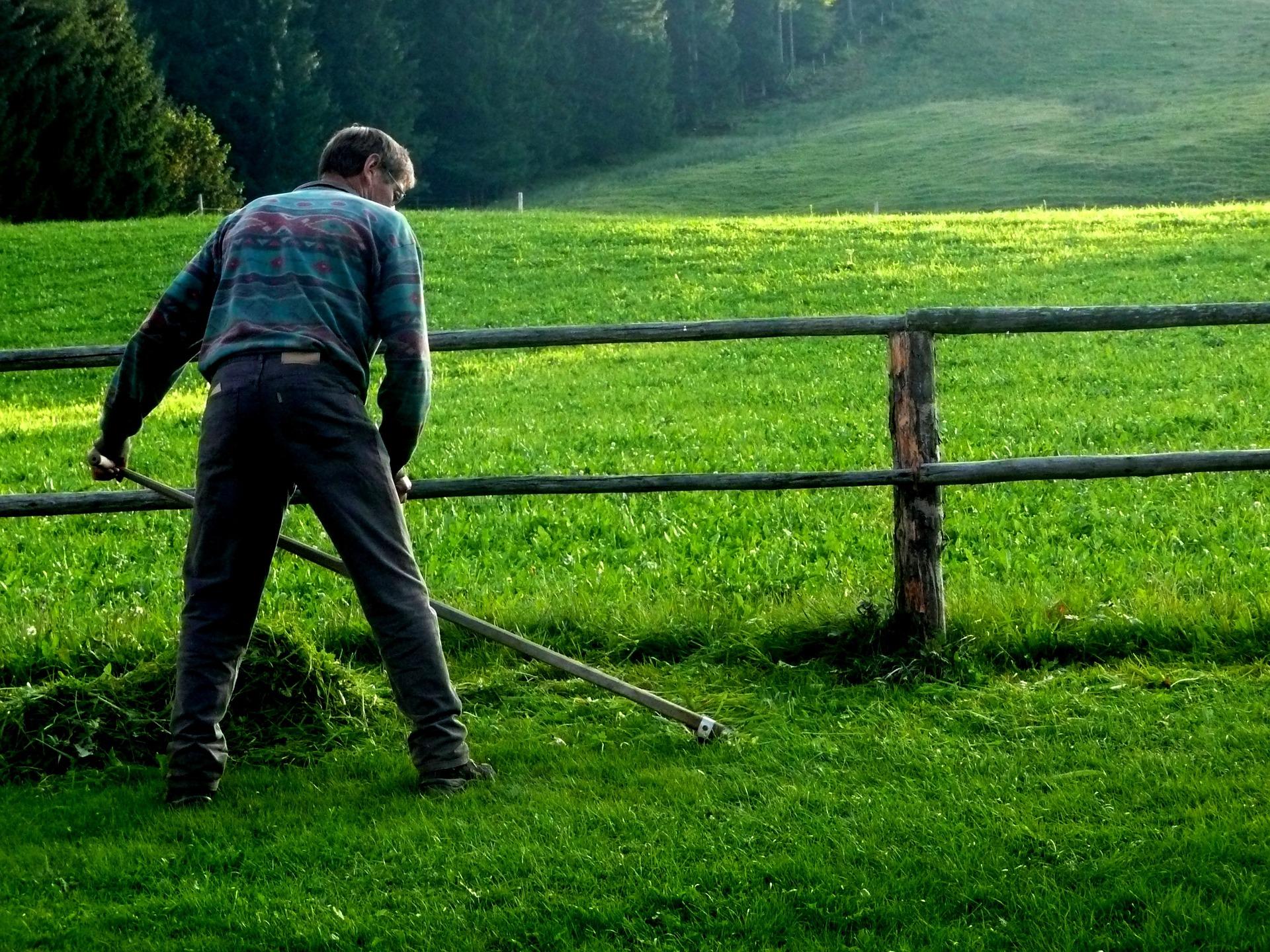 scythe grass cutting